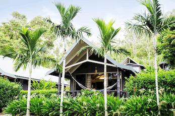 情侣,小家庭或是朋友团体的理想房型,座落在热带花园间的棕榈平房提供独立自足的住宿环境