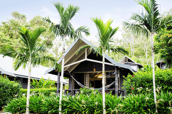 Ideal for couples, small families or groups of friends, the Palm Bungalows offer freestanding, self-contained holiday accommodation, amid lush, tropical gardens.