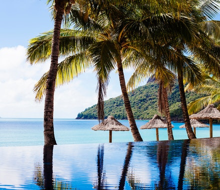 Beach Club pool - Hamilton Island resorts