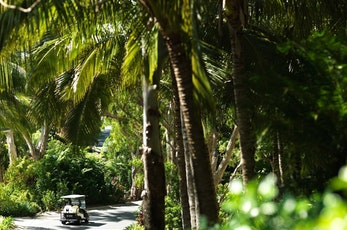 Hire a golf buggy - hotels Hamilton Island