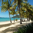 Relax on Catseye Beach on Hamilton Island - family holiday deals Hamilton Island