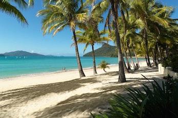 Relax on Catseye Beach on Hamilton Island - family holiday deals Hamilton Island